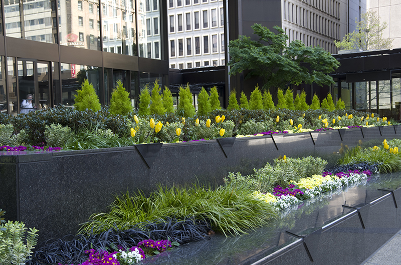 commercial office landscape management with flowers and shrubbery